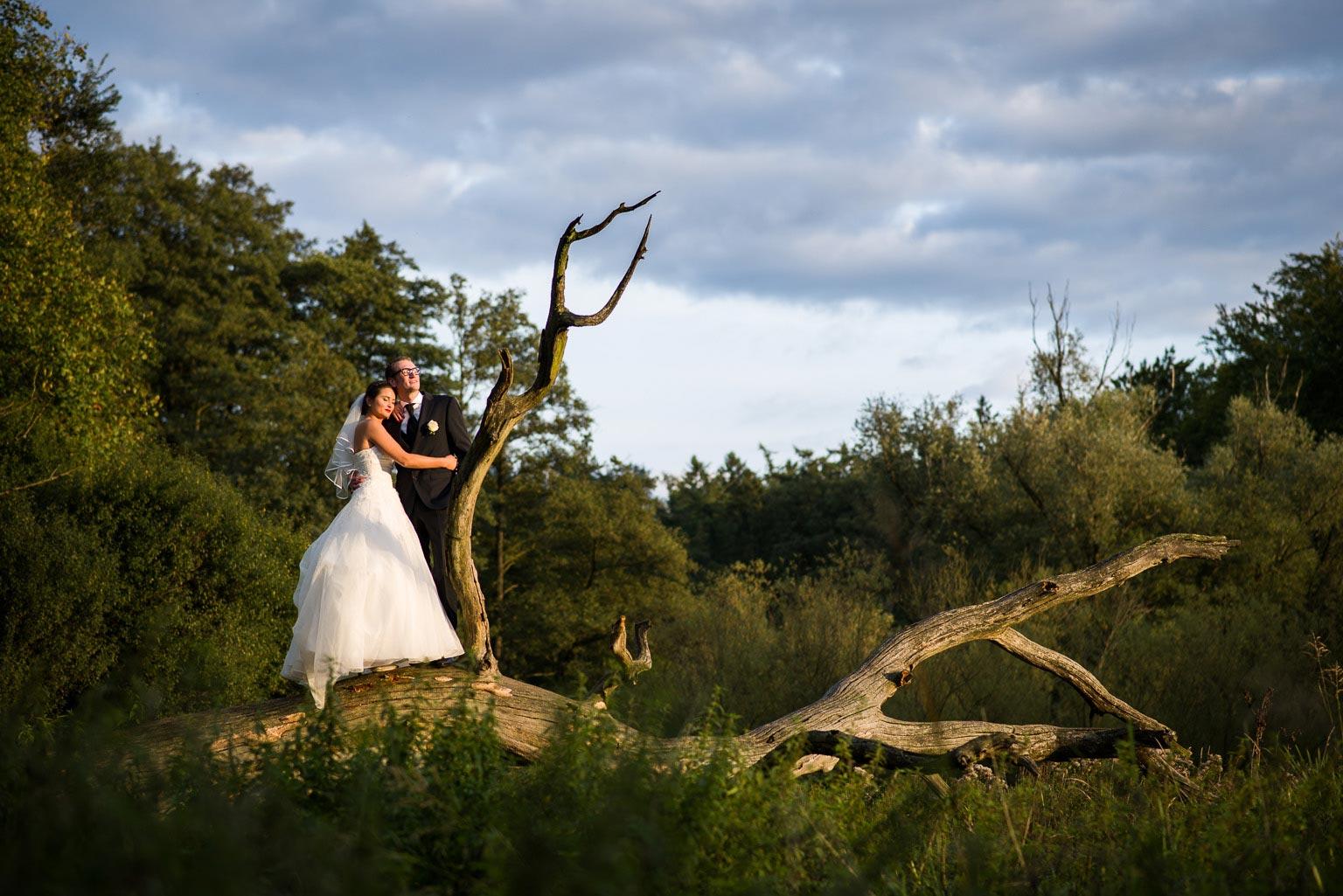 Hochzeitsportrait in Duvenstedt